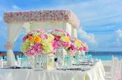 Event & Wedding Planners - Wedding Planner