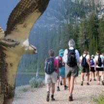 Hiking / Birding