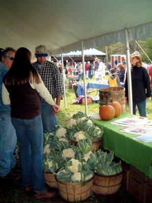 Pure Catskills Tent at Cauliflower Festival
