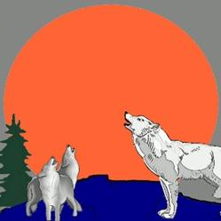 Rocky Mountain Wildlife Foundation