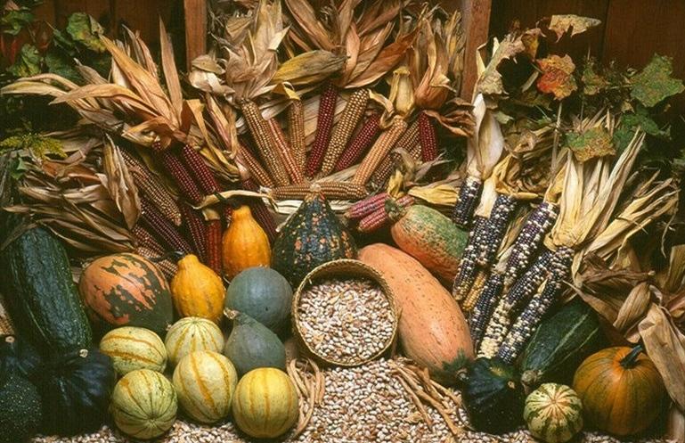 Seed Savers Heritage Farm thumbnail